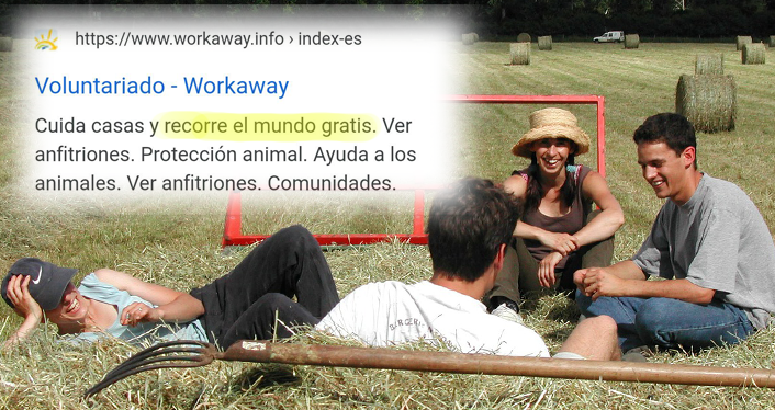workaway voluntariados